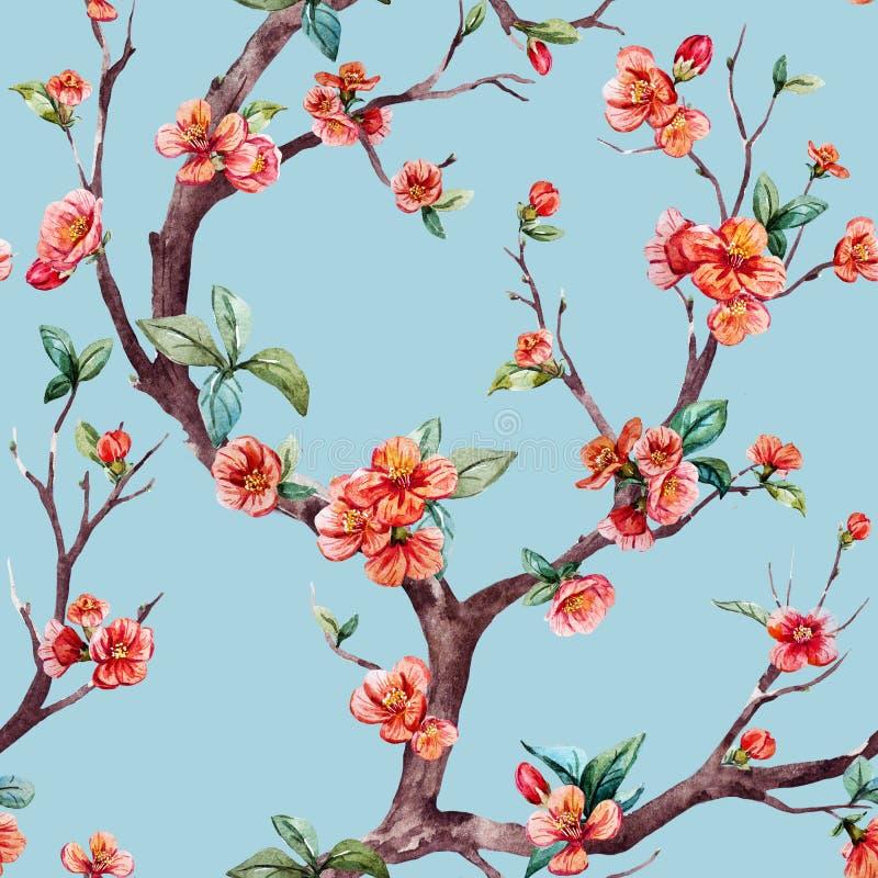 Akwareli raster Sakura wzór ilustracja wektor