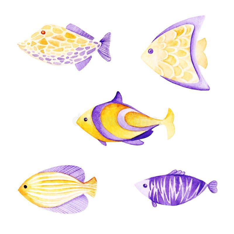 Akwareli ryba set Ultrafioletowi i złoto kolory Dla dzieci projekt, druk lub tło, ilustracja wektor