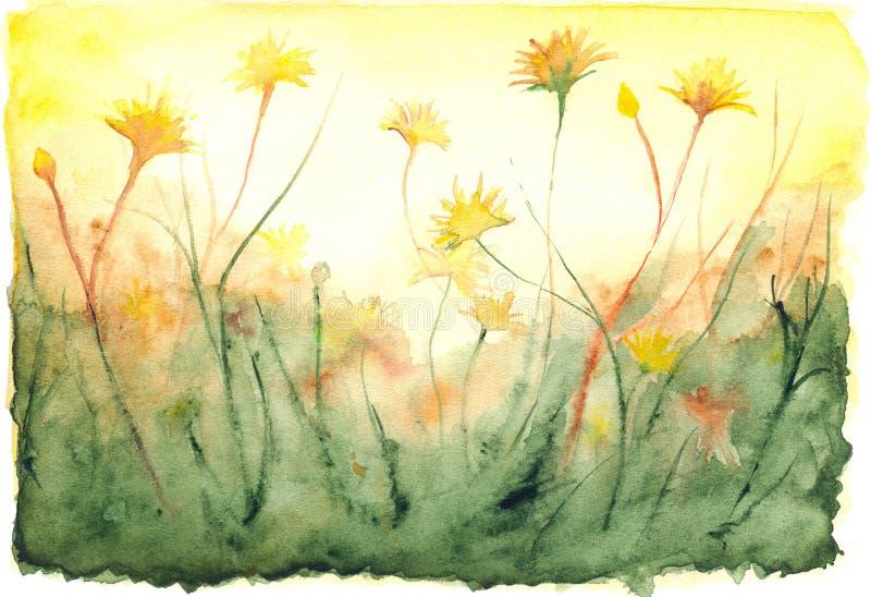 Akwareli słońca połysku dandelions pola żółty krajobraz ilustracji
