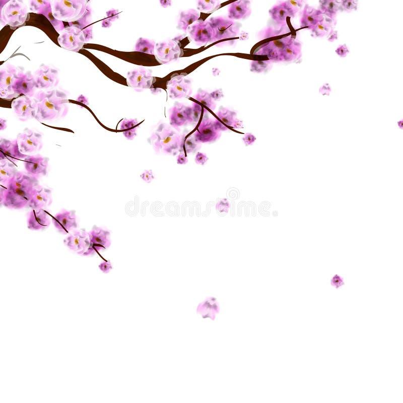 Akwareli Sakura tło z okwitnięcie wiśni gałąź Brzęczenia royalty ilustracja