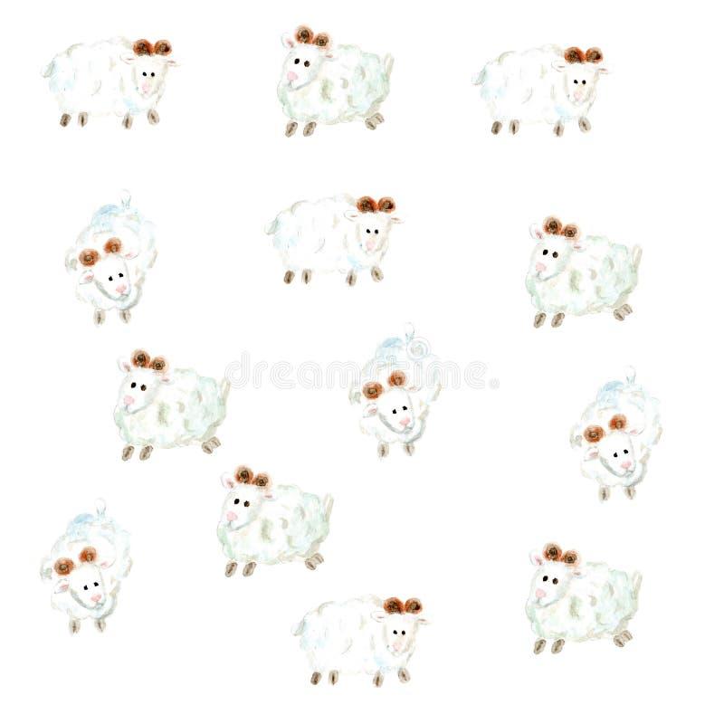 Akwareli sheeps ładny tło na bielu royalty ilustracja