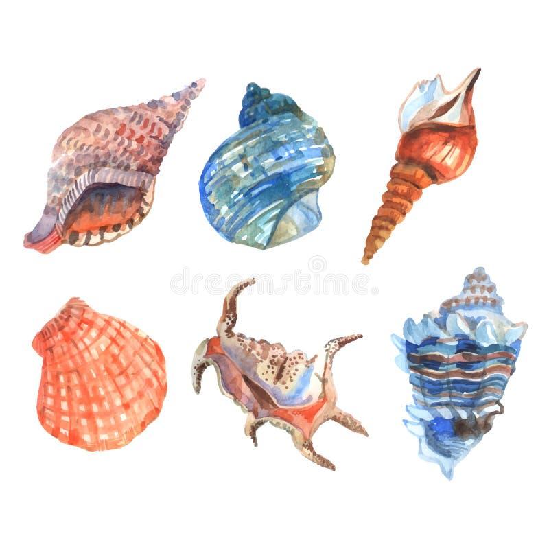 Akwareli Shell set royalty ilustracja