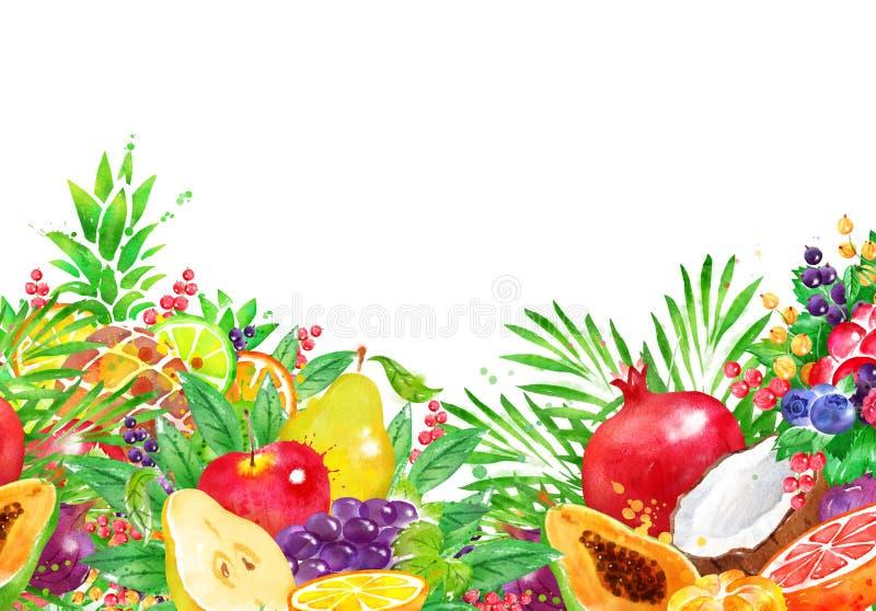 Akwareli tło świeża owoc i jagody royalty ilustracja