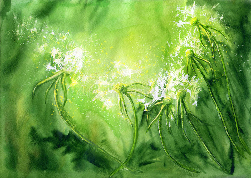Akwareli tło z dandelions ilustracji