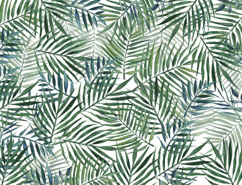 Akwareli tło z palmowymi liśćmi ilustracja wektor