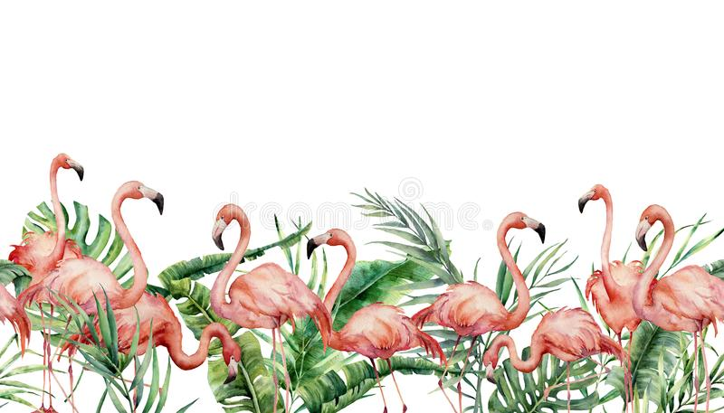 Akwareli tropikalna bezszwowa granica z flaminga i egzota liśćmi Ręka malująca kwiecista ilustracja z różowymi ptakami ilustracja wektor