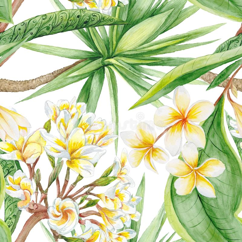 Akwareli tropikalne rośliny zdjęcia stock
