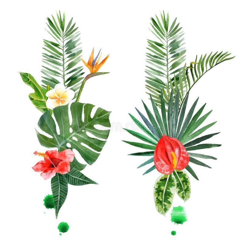Akwareli tropikalne rośliny dla twój projektów royalty ilustracja