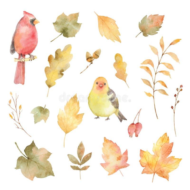 Akwareli wektorowa jesień ustawiająca liście i ptaki odizolowywający na białym tle ilustracji