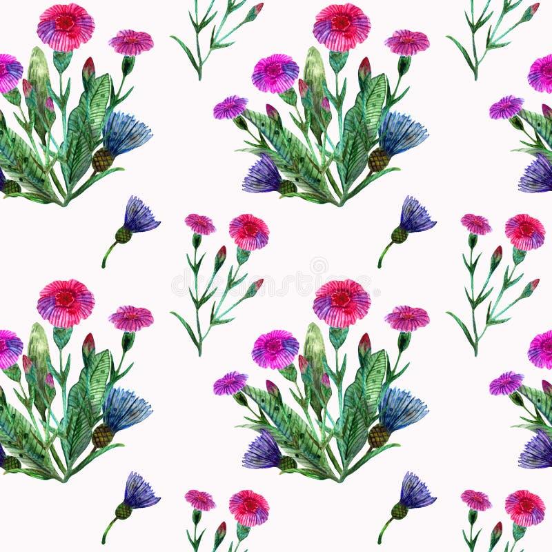 Akwareli wildflowers Bezszwowy wzór z bukietem różowi goździki i błękitni cornflowers ilustracji