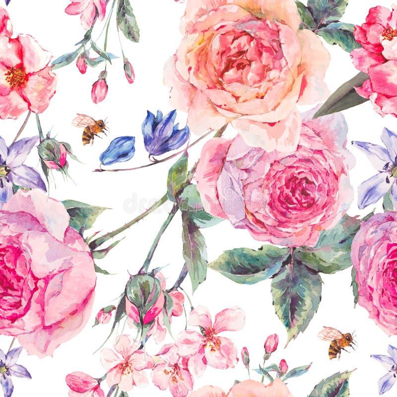 Akwareli wiosny bezszwowa granica z angielskimi różami royalty ilustracja