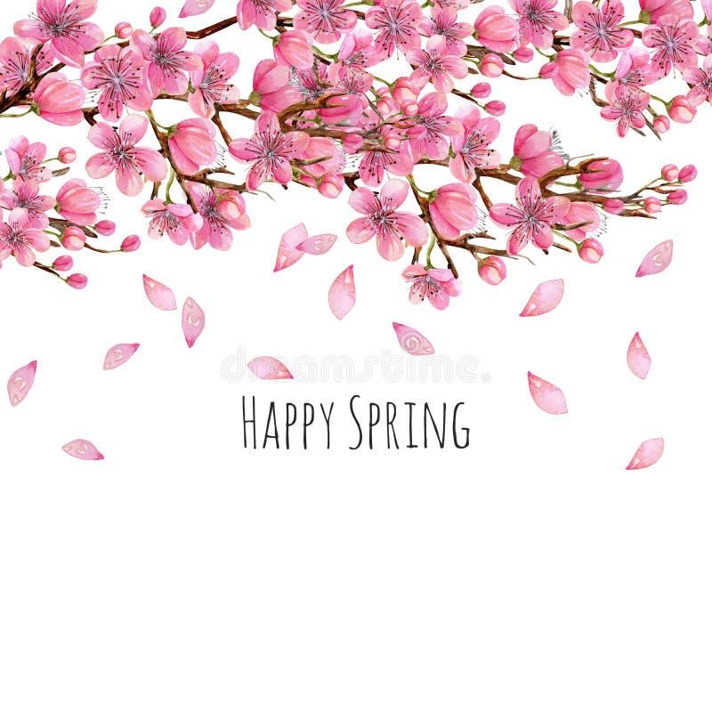 Akwareli wiosny gałąź kwitnący czereśniowy tło, karciany szablon ilustracji