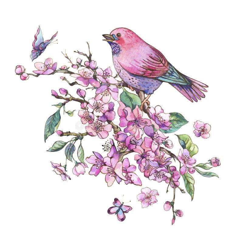 Akwareli wiosny kwiecista kartka z pozdrowieniami, różowy kwitnienie rozgałęzia się o royalty ilustracja