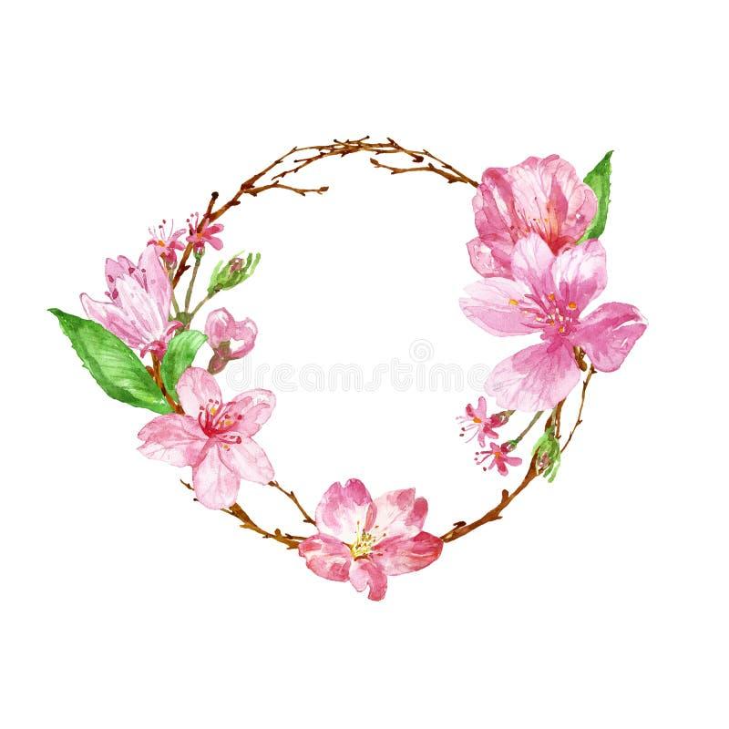Akwareli wiosny wianek z czereśniowym okwitnięciem Ręka malująca botaniczna rama z gałąź, różowymi Sakura kwiatami i liśćmi, obrazy royalty free