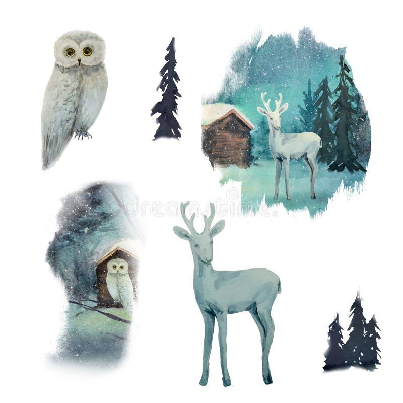 Akwareli zimy krajobraz z sową i rogaczami na drzewie w lesie royalty ilustracja