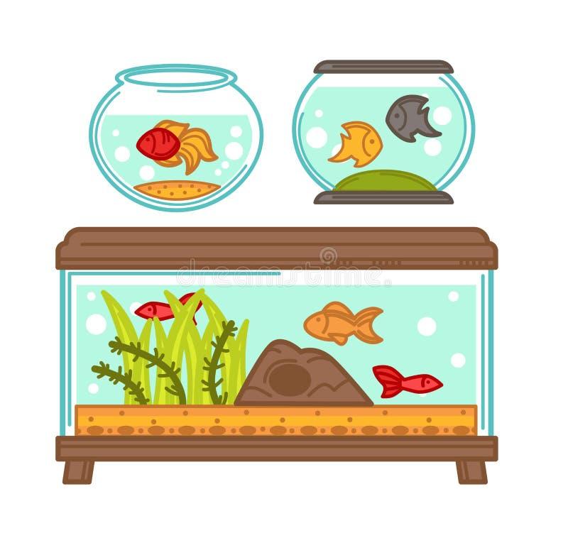 Akwaria ustawiający z florami i faunami w szklanym zbiorniku wypełniali z wodą ilustracja wektor