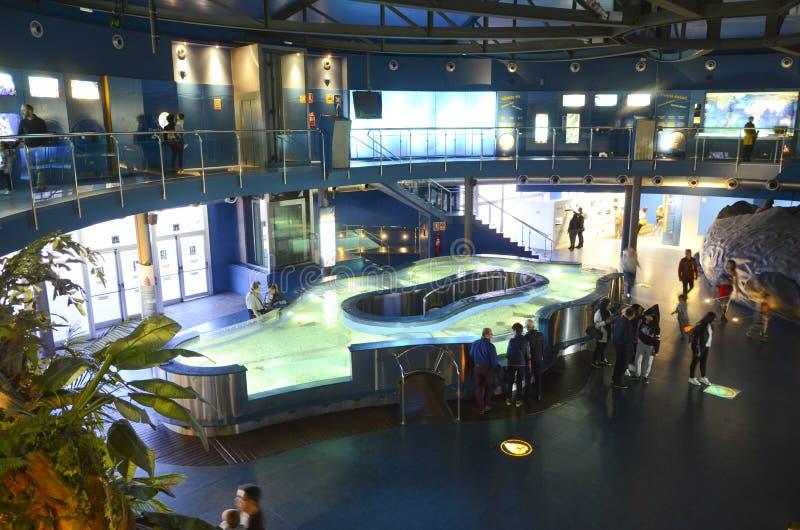 Akwarium de Barcelona, Hiszpania obrazy stock