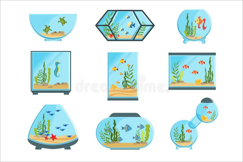 Akwarium zbiorniki ustawiający, różni typ akwaria z roślinami i ryba, wyszczególniali wektorowe ilustracje royalty ilustracja