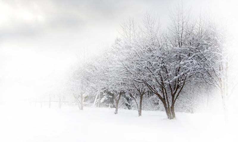Aléia do inverno bonita imagem de stock