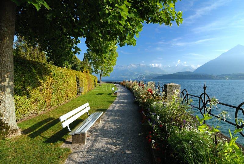 Aléia perto do lago imagens de stock royalty free