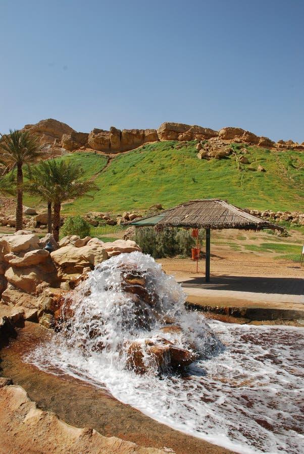 Al Ain Stad stock foto's