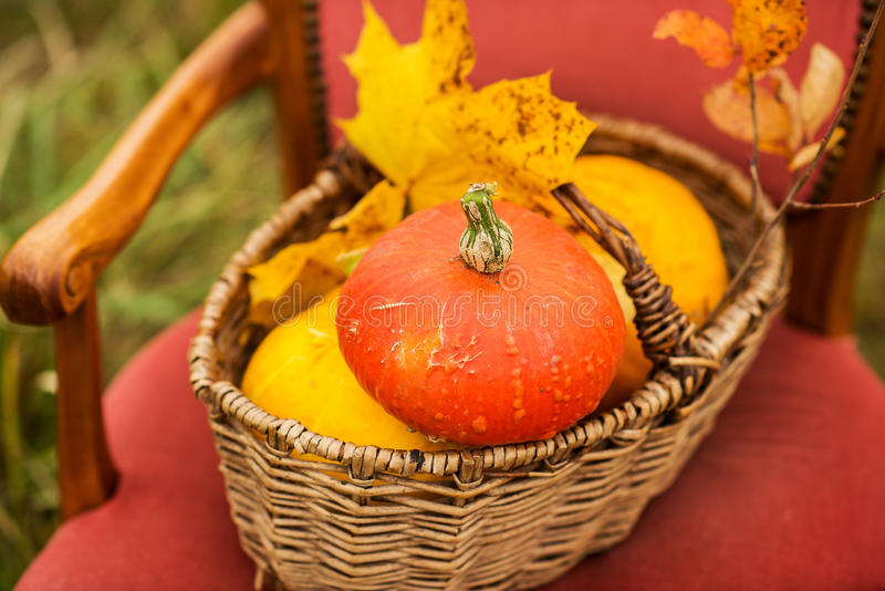 Al aire libre decoración de Halloween imagenes de archivo