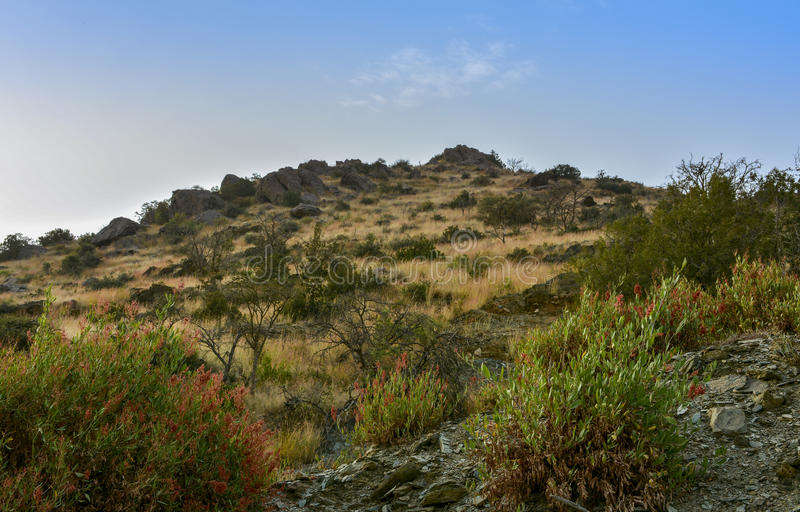 Al Baha Landscape stock foto's