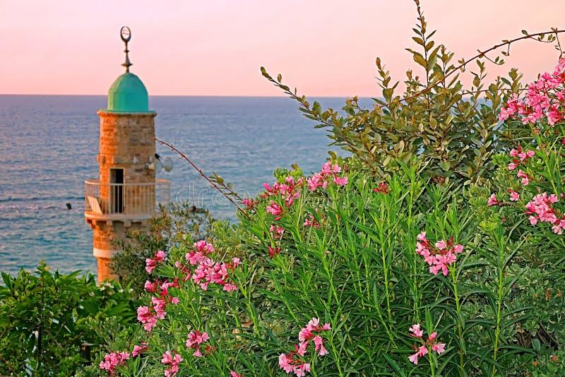 Al--Bahrmoschee oder Seemoschee in der alten Stadt von Jaffa, Tel Aviv stockfotos