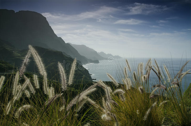 Al Barranco de la Palma, Gran Canaria fotos de archivo libres de regalías