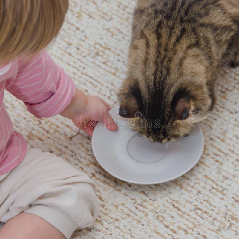 Al lado del gato en el piso sienta a un niño, la muchacha quiere a la tarifa imágenes de archivo libres de regalías