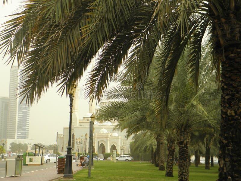 Al Noor Moskee stock afbeelding