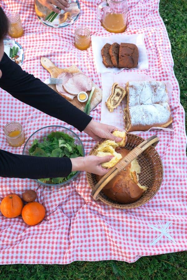 Al picnic immagine stock libera da diritti