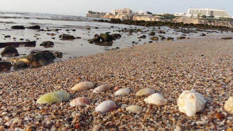 Al Qurum Beach sultanat av Oman Muscat royaltyfri foto