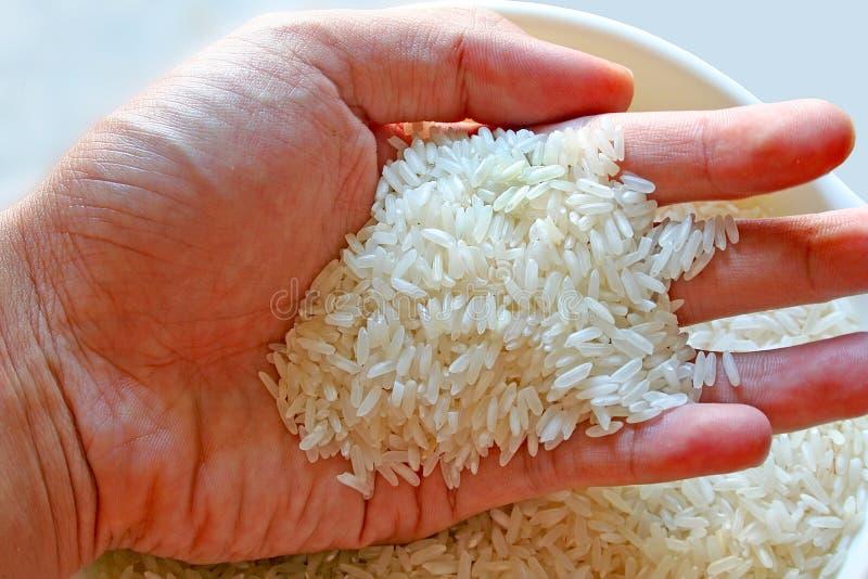 Download Al Rijst stock foto. Afbeelding bestaande uit nietje, rijst - 278744