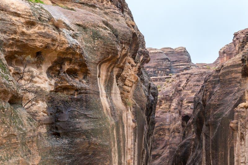 Al-Siq - kanjonen som leder röd-vagga igenom, väggar till Petra - huvudstaden av det Nabatean kungariket i den Wadi Musa staden i royaltyfri bild