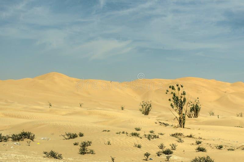 Al tradicional Khali 7 de la frotación del desierto de Omán Ubar de los turistas de Safari Dune Bashing de los jeeps foto de archivo