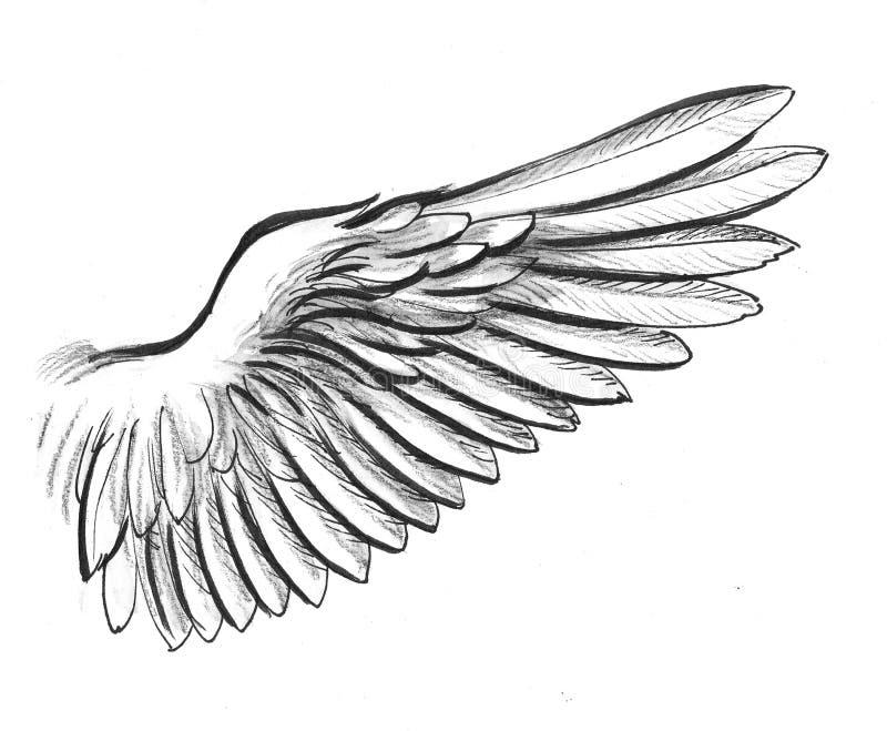 Ala bianca illustrazione vettoriale