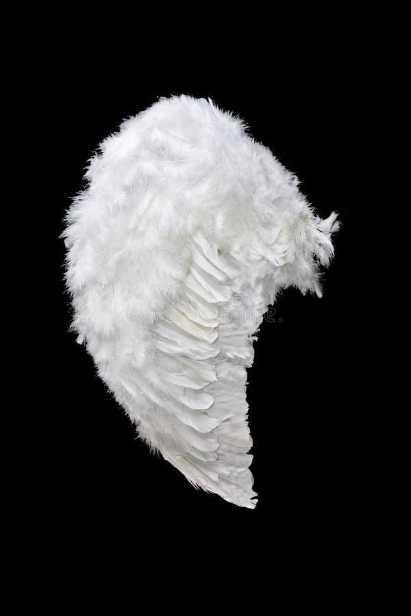 Ala blanca del ángel imagen de archivo