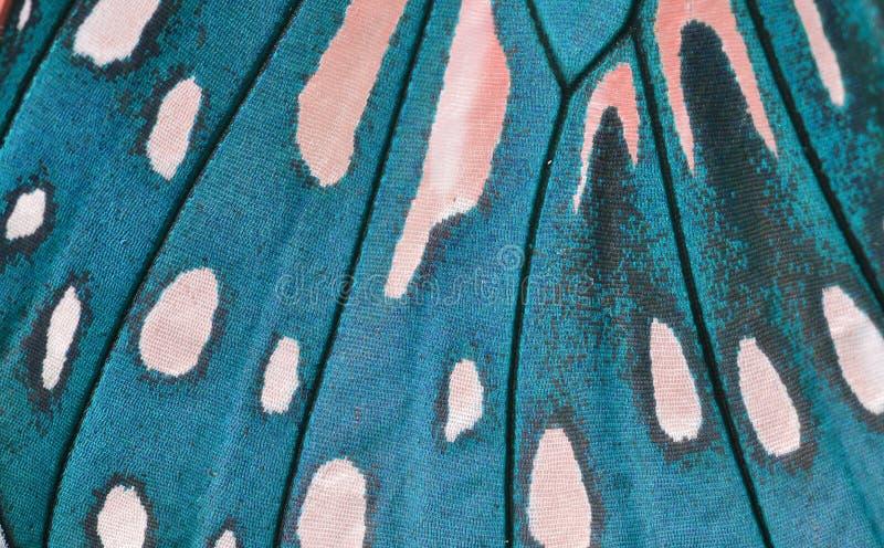 Ala de la mariposa imagen de archivo