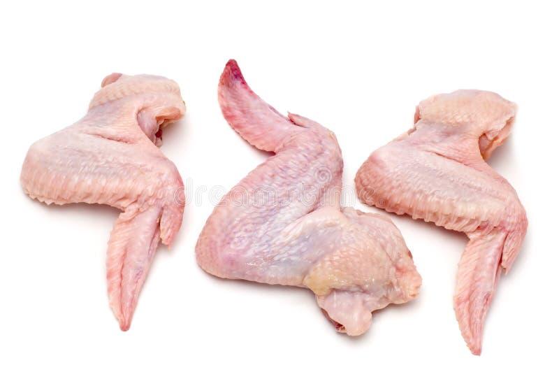 Ala de pollo fotografía de archivo