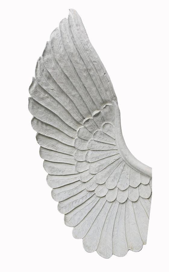 Ala del ángel aislada en el fondo blanco imagen de archivo libre de regalías