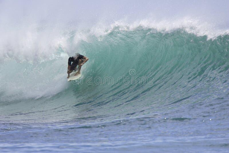 Download Ala moana chatka ii obraz stock. Obraz złożonej z surfing - 27299