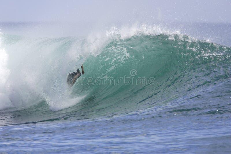 Download Ala Moana Keet I stock afbeelding. Afbeelding bestaande uit hawaiiaans - 27297