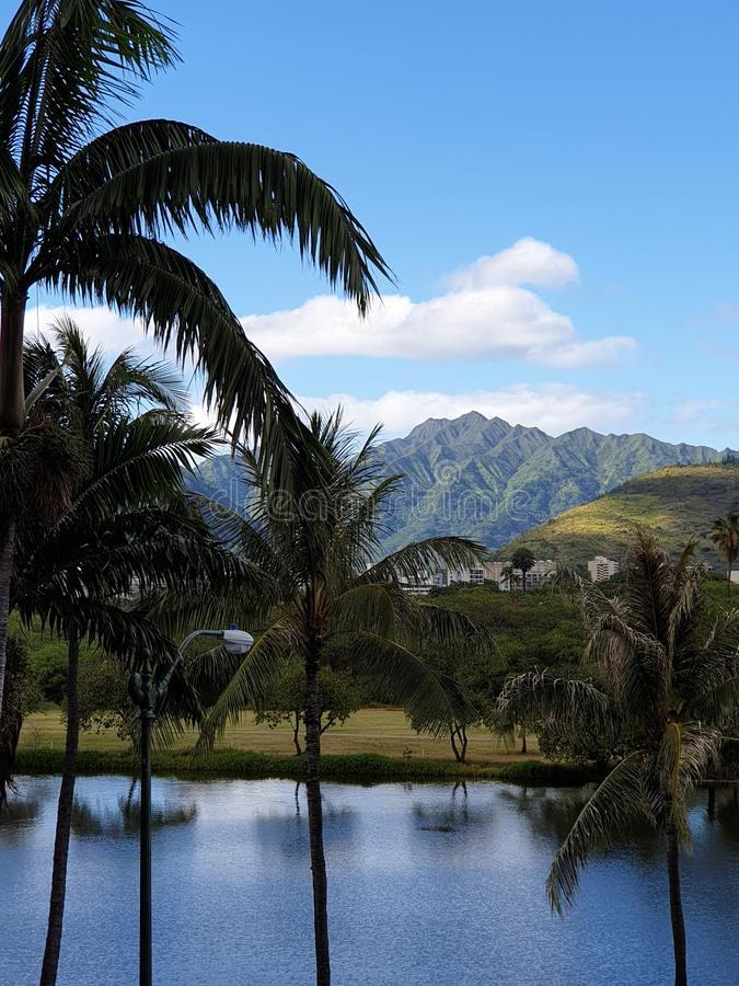 Ala Wai Canal imagen de archivo