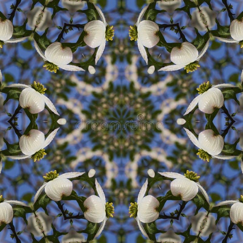 Alabama skogskornell blomstrar kalejdoskopkonst stock illustrationer