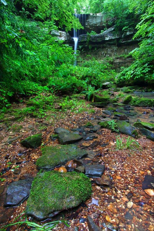 Alabama Waterfall Scenery royalty free stock image