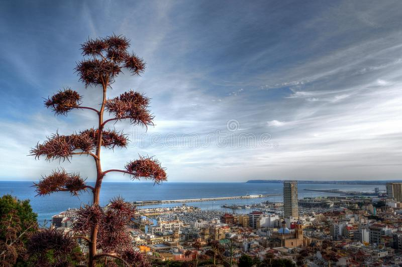 Alacant city royalty free stock image
