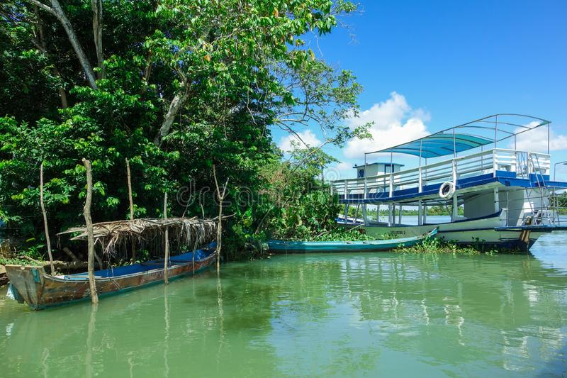 Alagoas/Brasilien - april 13 19: kanoter och träfartyg som parkeras på kanten av en tropisk flod royaltyfri bild