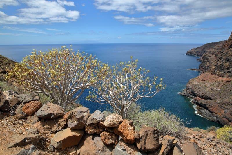 ALAJERO, ЛА GOMERA, ИСПАНИЯ: Взгляд одичалого побережья около Alajero от тропы Sendera Quise с красочными камнями и yello стоковая фотография rf