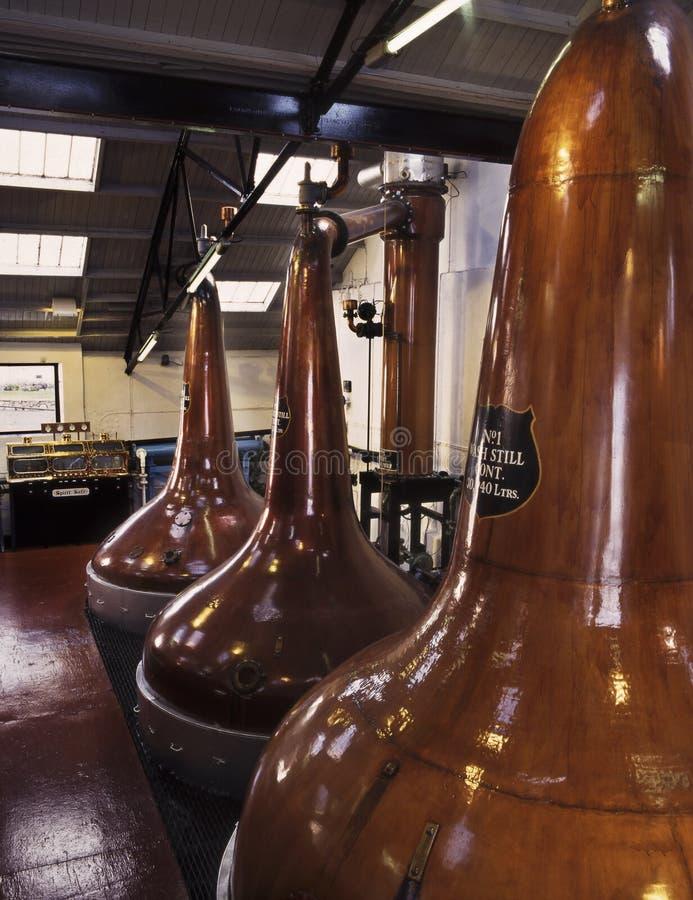 Alambiques del whisky de malta foto de archivo